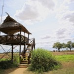 Satao Camp / Aussichtsplatz zu den Elefanten